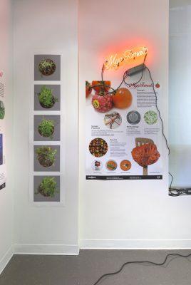 Bio Design Challenge 2017, School of Visual Arts BFA Fine Arts, Myotomato