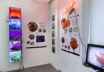 2017 BioDesign Challenge, SVA