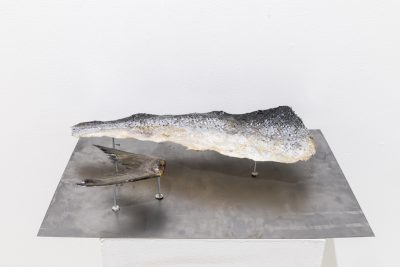 A piece of salmon skin and fin that have been preserved in resin sit on pins extruding from a sheet of metal