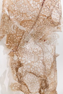 Detail of bubblewrap like sculptures made of gelatin and blood