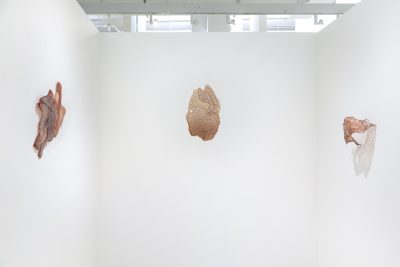 Fragile transparent sculptures made of gelatin and blood hang from the walls of a white room