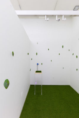 3d printed leaves hang from fishing line in a white room with astroturf carpet. In the corner of the room sits a transparent pedestal with a blue rose made of steel.