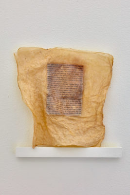 A page from a book embedded between two pieces of bacterial cellulose that have created a shrink wrap effect