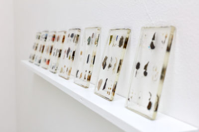 8 transparent rectangles, made of tiny objects embedded in resin, lean on a wall mounted shelf