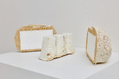 A sculpture made of mycelium grown around styrofoam is cut inhale to reveal the inside.