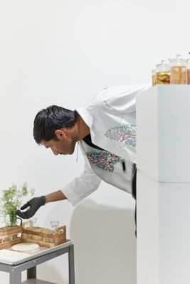 A man in a lab coat and gloves leans down and touches a plant cutting in a vase