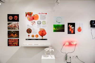MyoTomato SVA - 2016 Biodesign Challenge - Our Biotech Future(s) Exhibition