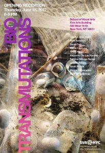 biotransmutations