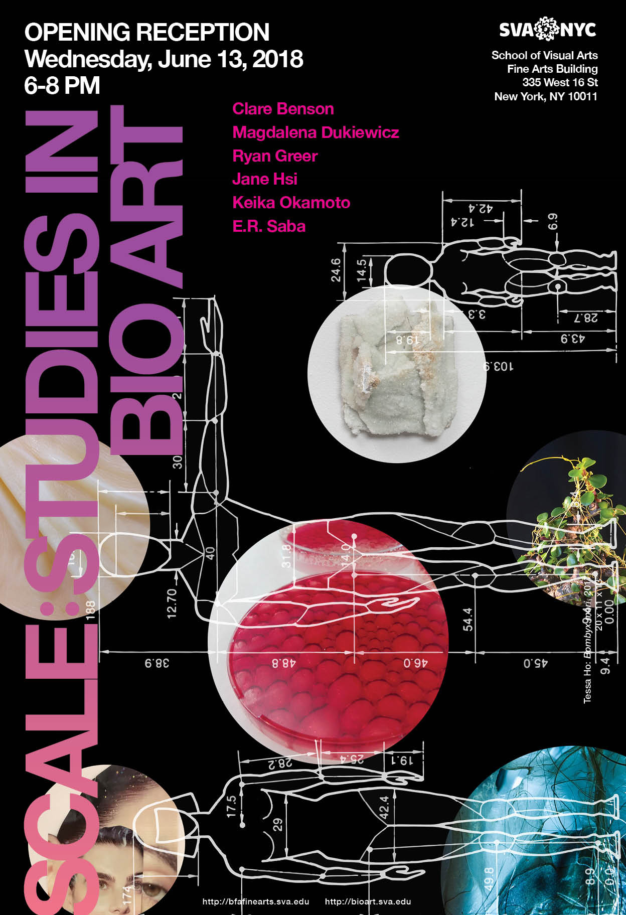 SCALE: STUDIES IN BIO ART - SVA 2018
