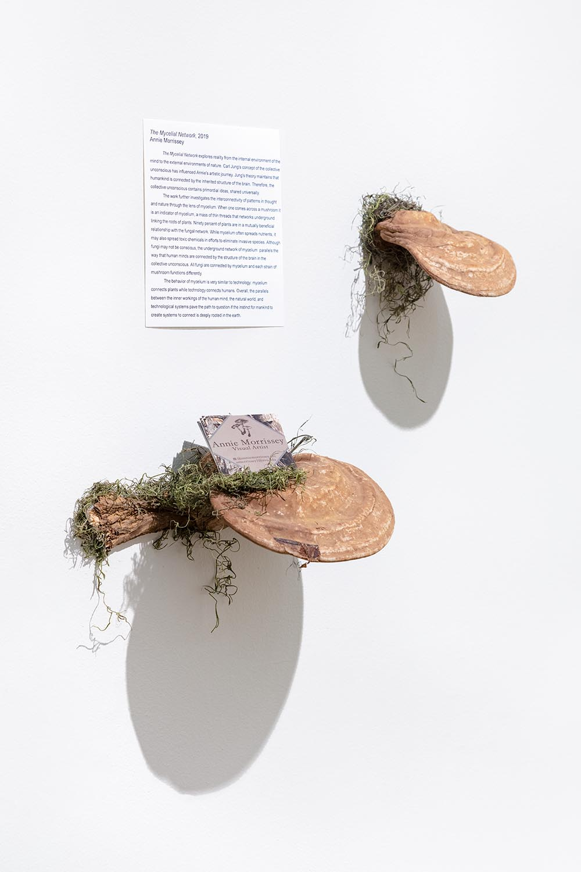 Annie Morrissey: Fall BFA Fine Arts Open Studios #1, 2019