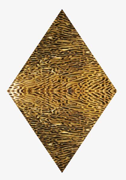 Annie Morrissey, <i>Guardian Reference</i>, 2020, Digital render of laser engraving on plywood.
