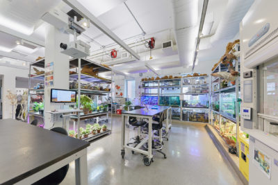 Empty work benches in a laboratory setting filled with plants and specimens