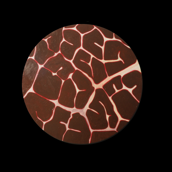 This painting is of a maroon colored leaf under the microscope. The leaf leaves us wondering if it is a close up image of a brain, due to it resembling one so much.