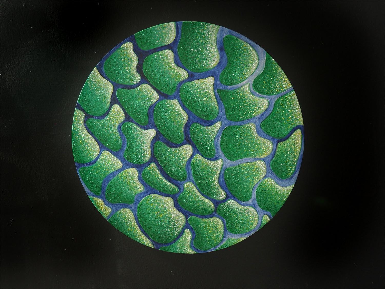Amanda DeJulia (DJ), Viridi Mare, 2020. Acrylic on wood panel. 12 inch diameter.