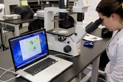 Using a microscopic imaging station, a student observes the live view of a water sample on a laptop