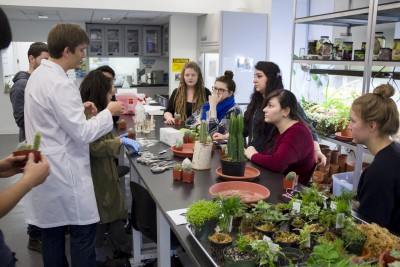 Students gathered around a table of plants, receiving instructions during a workshop on grafting cacti