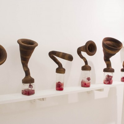 """Jia Yoon: """"Silent Shout"""". 2013. Wood, glass jar, meat and ice. Dimensions variable"""