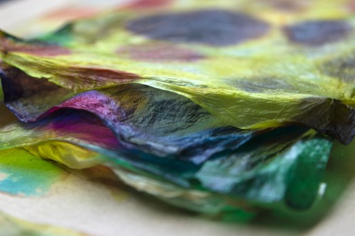 From the Laboratory to the Studio: Practices in Bio Art