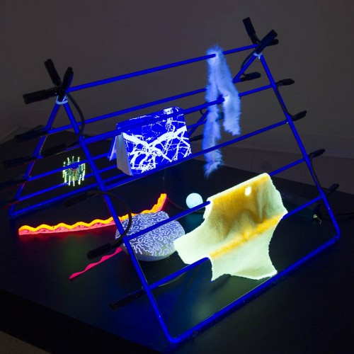"Priscilla Jeong: ""Sober mimicry"". 2012. Mixed media. Dimensions variable"