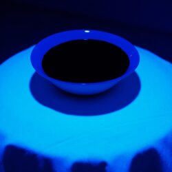Steve Chen, No Title, 2019. Black light, ceramic bowl, ink, dimensions variable.
