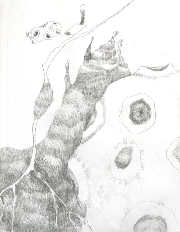 Sueun Lee: Untitled (sketch), Year. Graphite on paper. (9 x 12 inches).