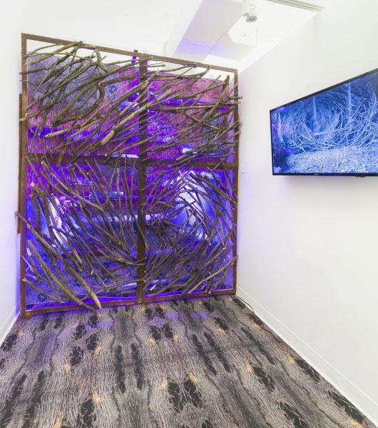 Viktorea Nagibina, SVA BFA Fine Arts, NYC, Chelsea